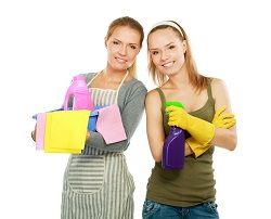 furniture cleaners w2