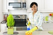 Services Offered by Domestic Cleaners